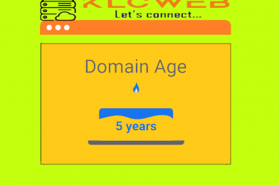 Is domain age a good metric for the domain investing?