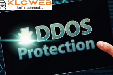 DDoS Protected VPS – Why it is important for your website?